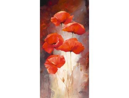 Купить Картины по номерам Идейка Нежные маки (арт. KH2917) 35 х 50 см