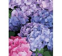 Картина по номерам ArtStory Букет гортензии AS0334 40 х 50 см