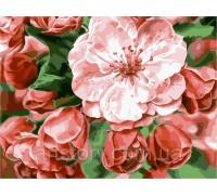 Картина по номерам ArtStory Цветочная нежность  AS0239 40 х 50 см