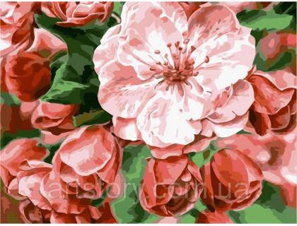 Купить Картина по номерам ArtStory Цветочная нежность  AS0239 40 х 50 см