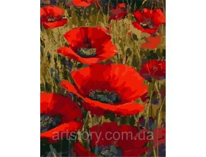 Купить Картина по номерам ArtStory Маки в поле  AS0245 40 х 50 см