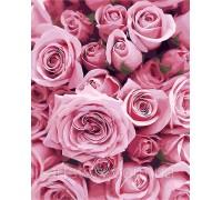 Картина по номерам ArtStory Розовые розы AS0248 40 х 50 см