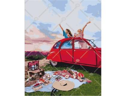 Купить Картина по номерам Пикник с подружкой КН4535 40 х 50 см