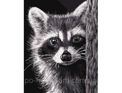 Купить Картина по номерам ArtStory Милый енотик AS0068 40 х 50 см