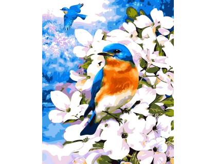 Купить Картина по номерам ArtStory  Синичка на ветке AS0052 40 х 50 см