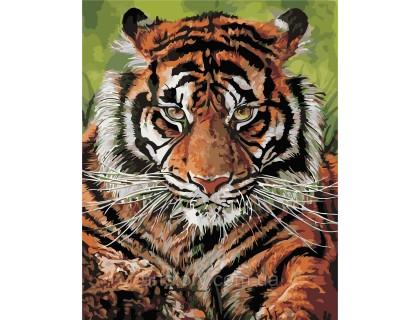 Купить Картина по номерам ArtStory Сильный тигр AS0393 40 х 50 см
